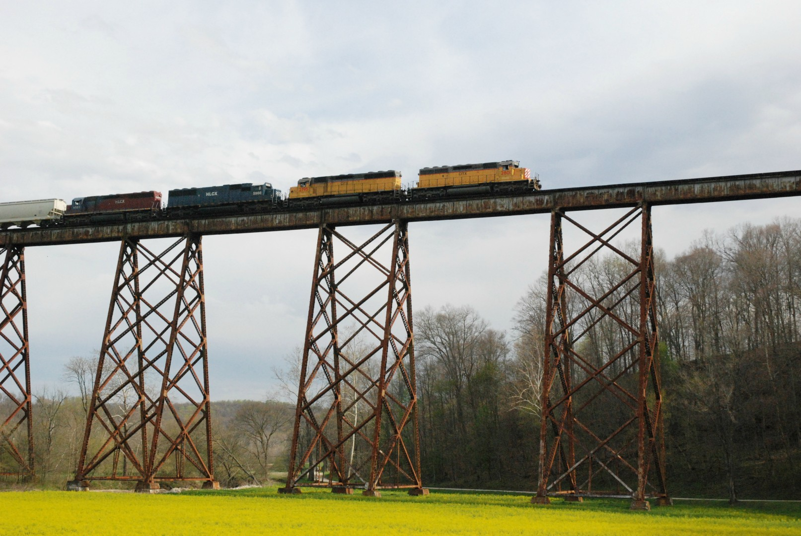 Greene County Tressel, http://www.visitgc.com/where-to-go/innovation/tulip-trestle/